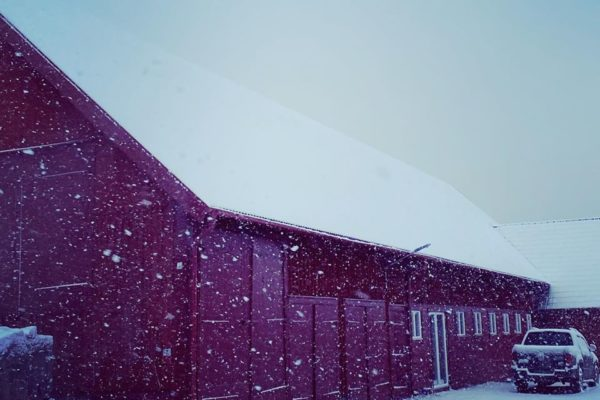 The paint barn in snow